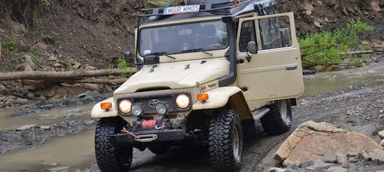 Land Cruiser UZJ 40 - Plum